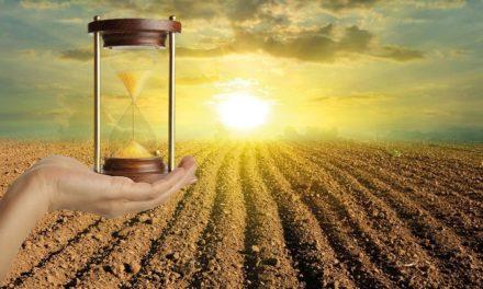Futuro da agricultura brasileira • Cesario Ramalho
