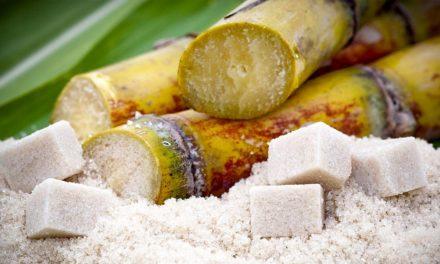 Açúcar, etanol e bioeletricidade: a importância de não perder oportunidades • Plinio M. Nastari