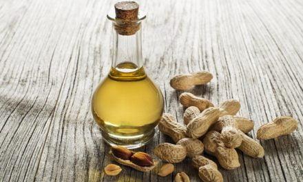 Amendoim: exportações do grão estão em alta, mas do óleo registram queda em 2016