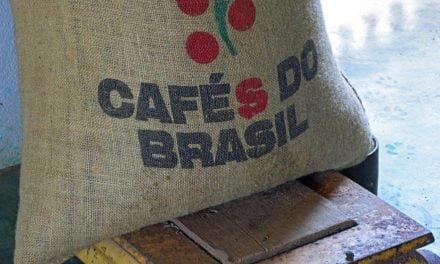 Receita cambial de exportação de café aumenta 4,5% em março