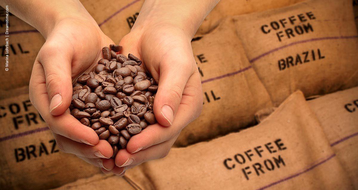 Receita cambial das exportações de café brasileiro cresceu 2,7% em abril