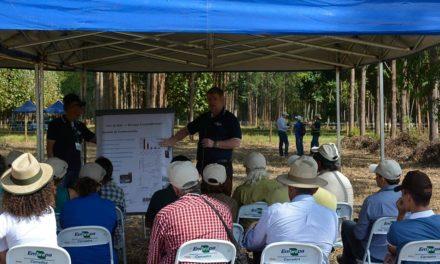 Sustentabilidade foi tema de Dia de Campo na Agrobrasília