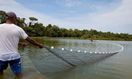 Piscicultura volta a crescer e safra pode render R$ 1 milhão a produtores de Laguna Carapã/MS