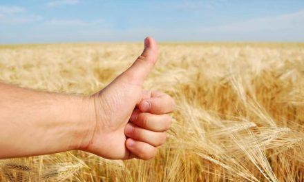 Confiança do agronegócio se mantém em nível otimista