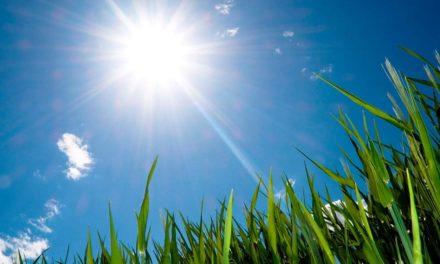 AGCO adquire Precision Planting da Climate Corporation