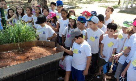 Secretaria da Agricultura de São Paulo tem programação divertida e informativa para a criançada aproveitar as férias