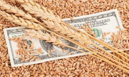 Exportações em alta no agronegócio paulista