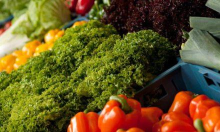 Foco na segurança alimentar
