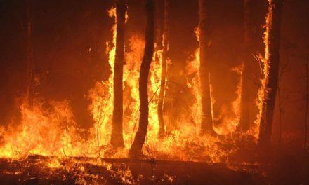 Estamos preparados para combater as queimadas no Brasil?