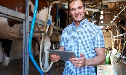 Curso de gestão da propriedade transforma desempenho leiteiro