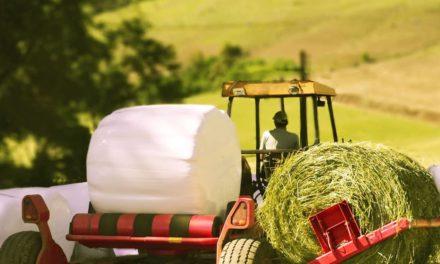 Solução Braskem para armazenamento de alimentação animal