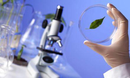 """""""Soluções Biológicas"""" é o tema central da ESALQSHOW"""