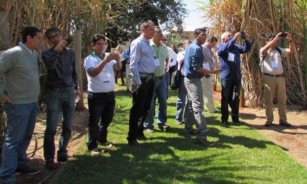 Projeto Brazil Sugarcane realiza rodadas de negócios na Fenasucro 2017