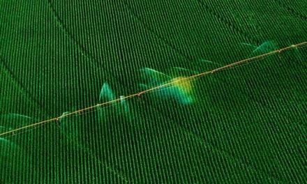 Consórcio Brasil-Europa financia pesquisa em internet das coisas para irrigação inteligente