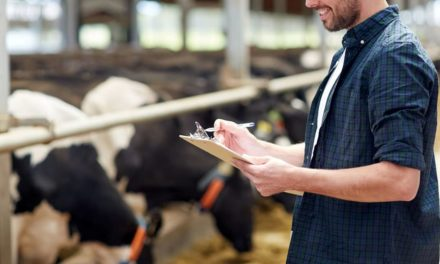Mesmo na estiagem, leite produzido por atendidos do Senar/MS é quatro vezes maior que média estadual