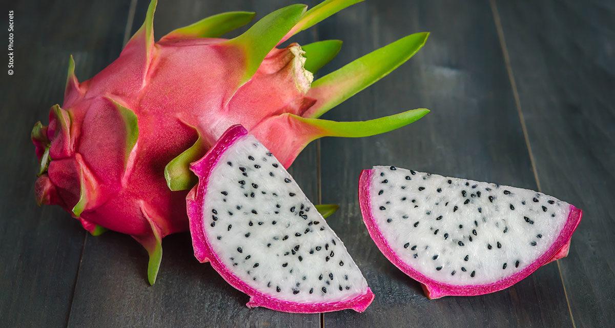 Produtor quer popularizar o preço da pitaya