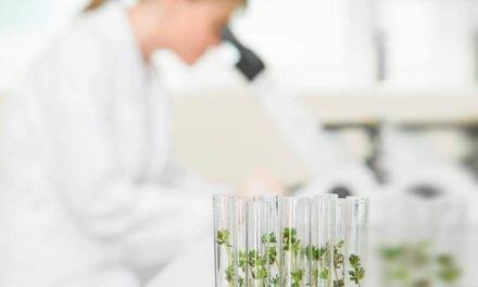 Ciência deve ser livre, mas sua aplicação precisa ser controlada, afirma especialista em bioética