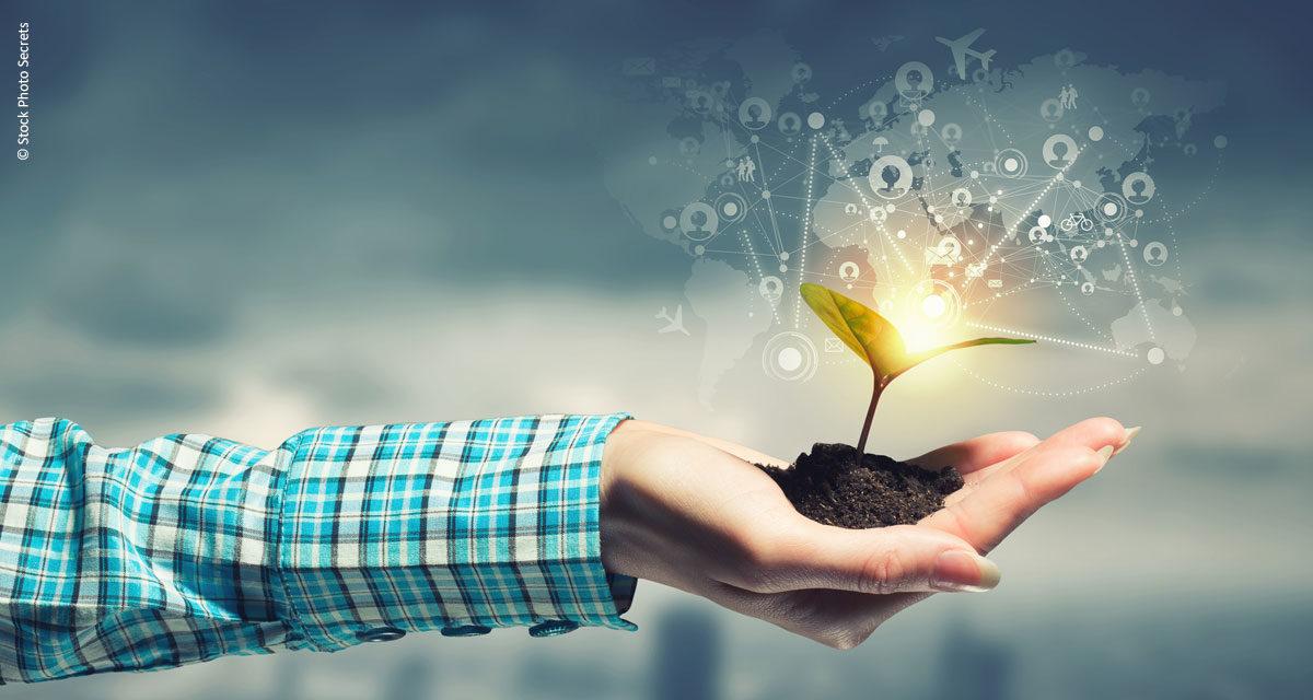 Inovações no campo ou campo de inovações?