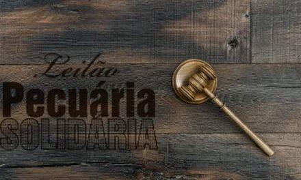 Leilão Pecuária Solidária volta às origens e será realizado no dia 12 de novembro em Gurupi (TO)