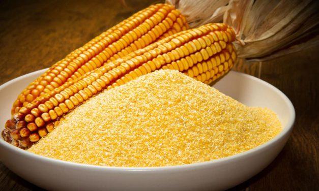 Ingredion e Coopercitrus firmam parceria e aumentam vantagens para o agricultor