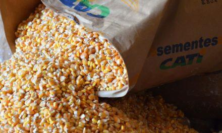 CATI inicia venda de sementes e mudas com desconto para agricultores familiares