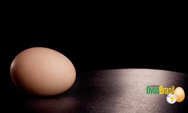 Instituto Ovos Brasil: 10 anos em defesa da avicultura nacional