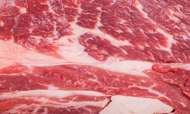 Exportações de carne bovina brasileira têm alta de 17% em setembro