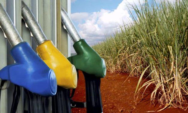 Etanol brasileiro pode substituir 13,7% do petróleo consumido no mundo