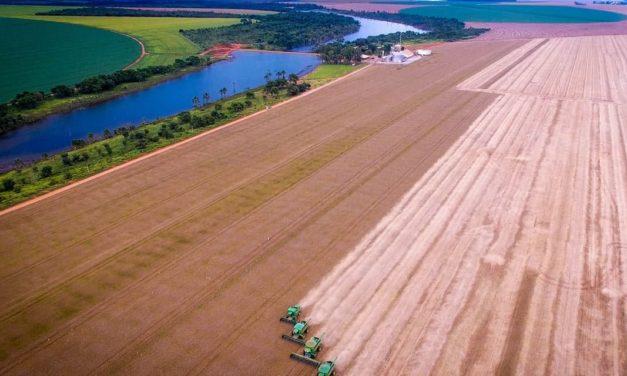 Bayer inaugura primeira fazenda do projeto ForwardFarming no Brasil