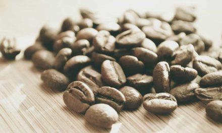 Exportações de café apresentam crescimento em outubro de 13,2% na comparação com o mês anterior