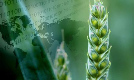 Senior lança ERP para que produtor rural faça o controle de suas safras
