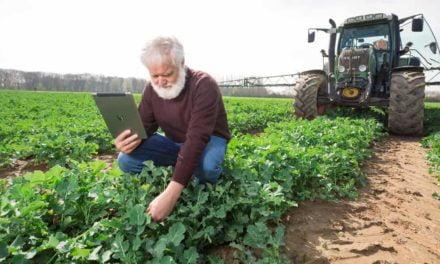 Desafios e oportunidades, ética, inovação e eficiência do setor agrícola