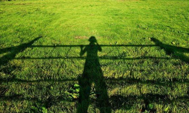 Agricultura familiar, desafios e oportunidades rumo à inovação