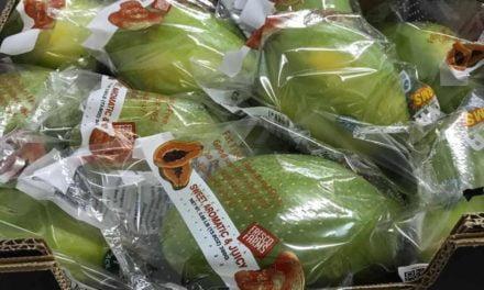 Braskem se une com produtores para o desenvolvimento de embalagens para exportação de frutas