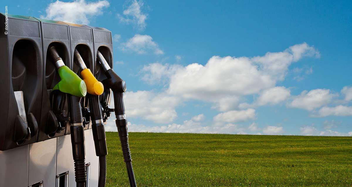 Pesquisa da Embrapa pode melhorar produção de biocombustíveis