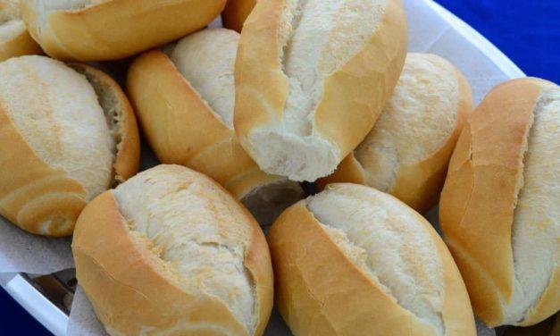 Da semente à farinha, como a escolha da cultivar favorece a comercialização do trigo