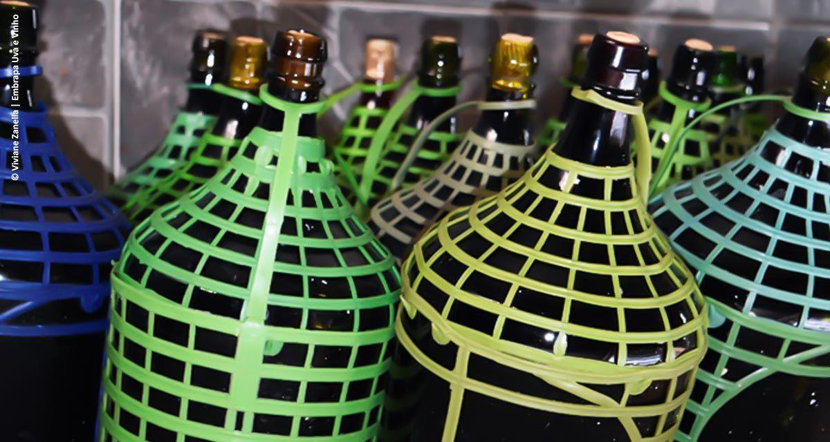 Com ajuda da ciência, primeiras vinícolas gaúchas de pequeno porte são legalizadas