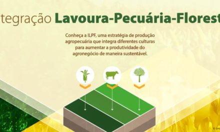 Rede ILPF vira Associação e ganha novas adesões