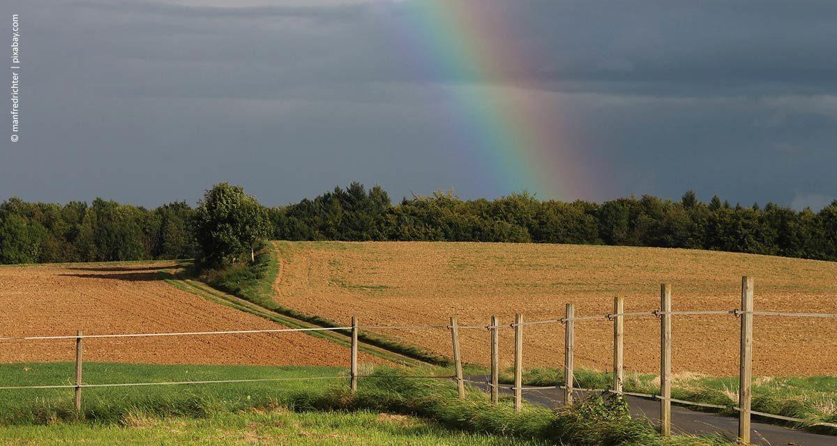 Novos tempos da meteorologia no campo
