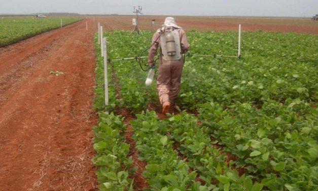 Sistemas de alerta contra a ferrugem da soja
