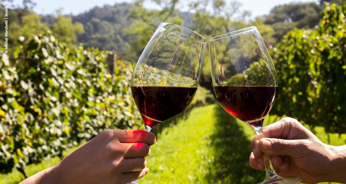 Dia do Vinho 2018 chega com atrações espalhadas por três regiões do Brasil