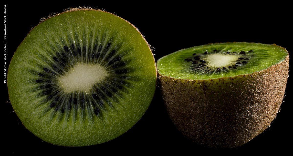 Clima afeta produção de kiwi em Caxias do Sul (RS)