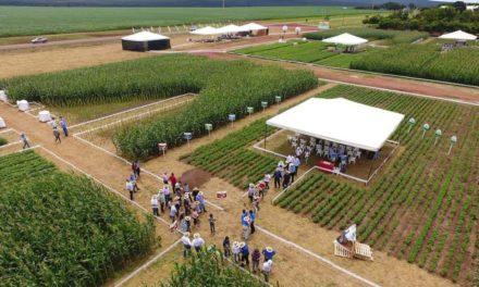 Nova linha de fertilizantes biológicos é apresentada a produtores de grãos