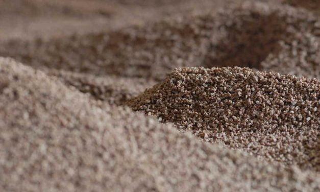 Biomassa é alternativa de investimento em energias sustentáveis