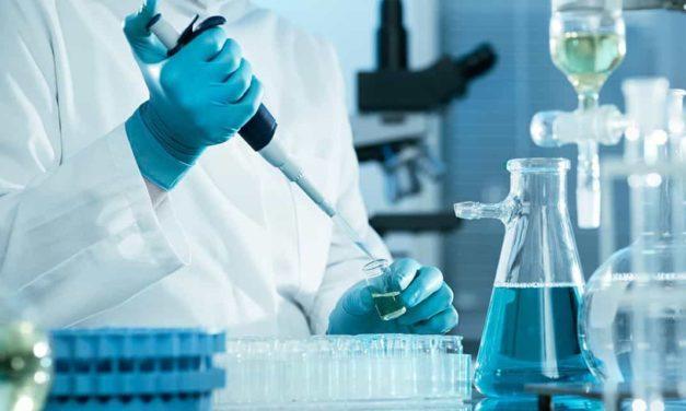 Salmonella: medidas de seguridade devem ser adotadas por toda a cadeia produtiva