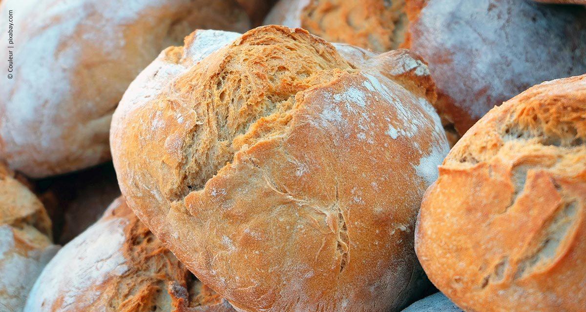 Escassez de trigo e alta do dólar podem se refletir no bolso do consumidor