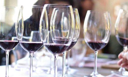 Projeto Comprador reforça oportunidades de negócios para o vinho brasileiro
