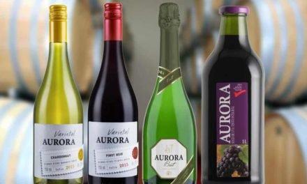 Vinícola Aurora tem aumento de 258% em exportações no primeiro quadrimestre