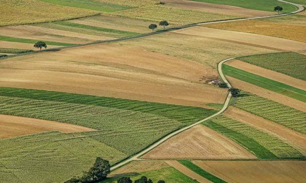 Agro sem tecnologia e gestão não é negócio