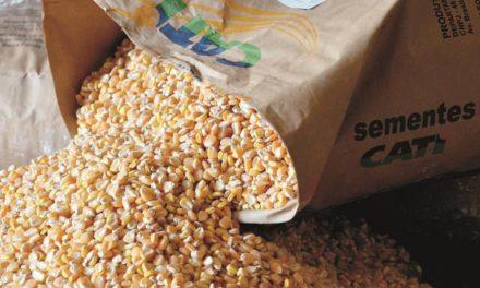 CATI antecipa venda de grãos em prol dos produtores paulistas afetados pela paralisação dos caminhoneiros
